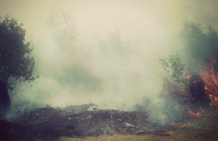kabut asap indonesia tanda kiamat