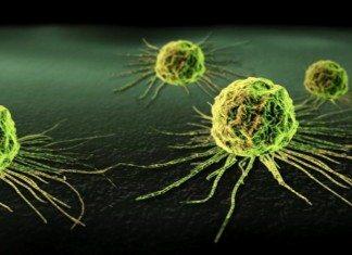 kanker syahid