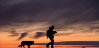 hukum muslim memelihara anjing